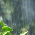 カビ、雨漏り、湿気に負けない!梅雨時の自宅点検ポイント