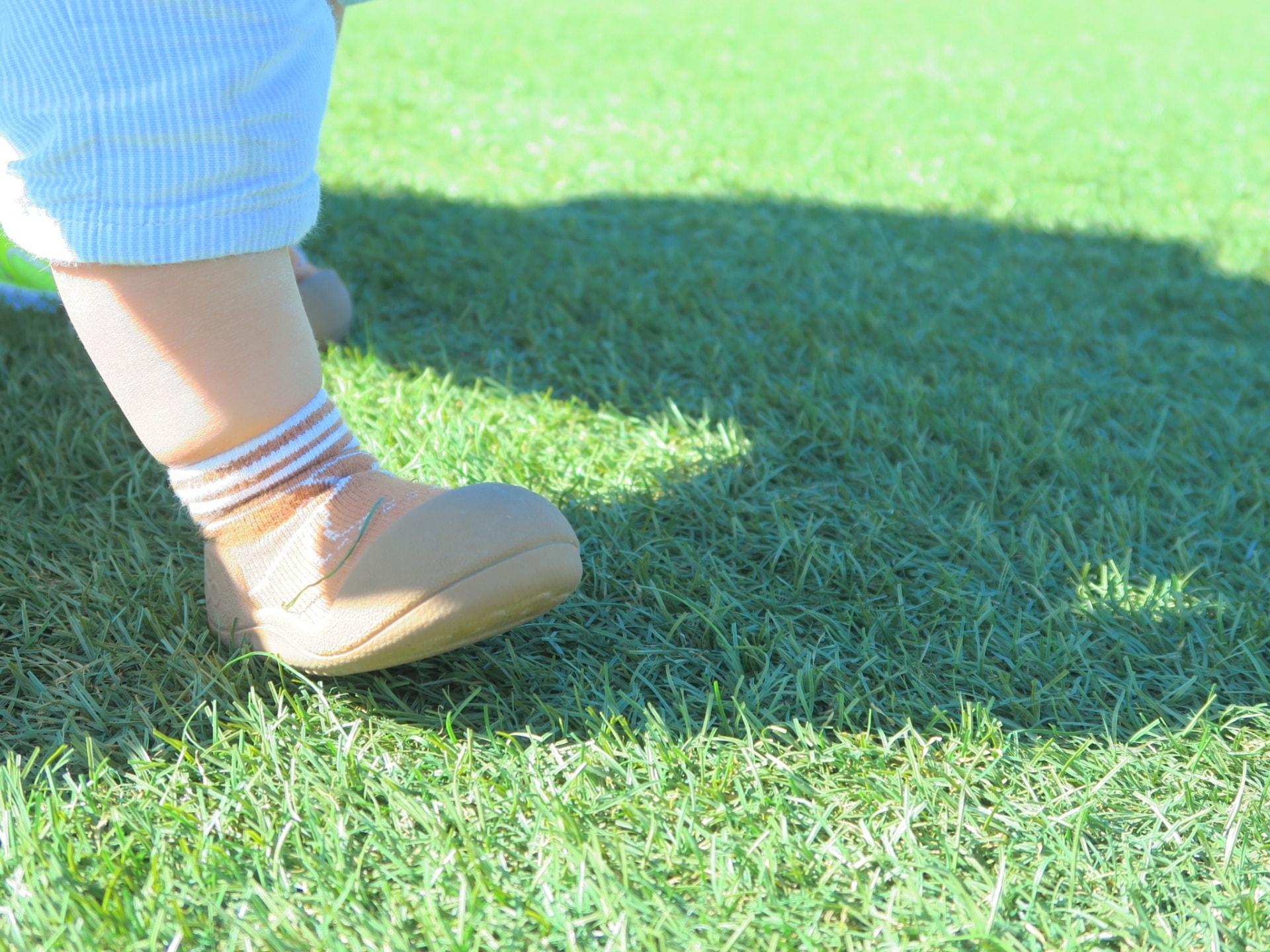 芝生でヒートアイランド対策