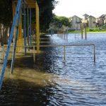 高まる災害リスク、住まい選びでは何を調べればいい?
