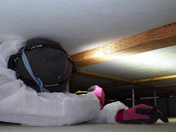 屋根裏調査オプション